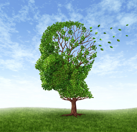 What's Fertilizing Your Memory Trees? Phantom Facts or Powerful Truths